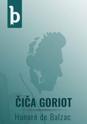 Slika Čiča Goriot